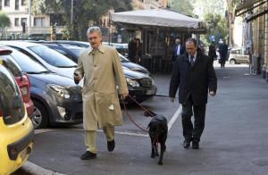 D'Alema porta fuori il cane