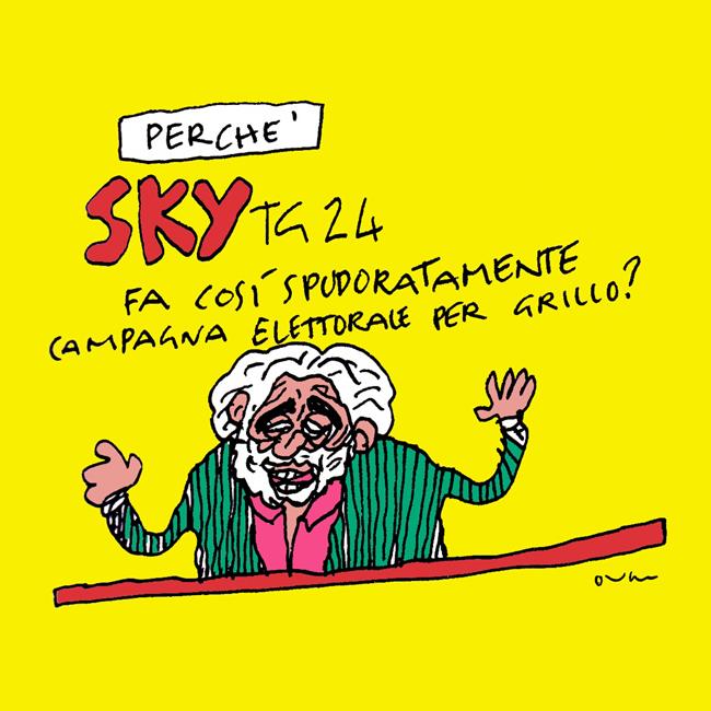 20130525_sky-tg-grillo